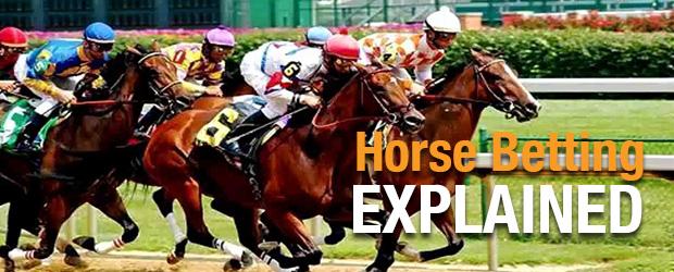 Horse Betting Explained