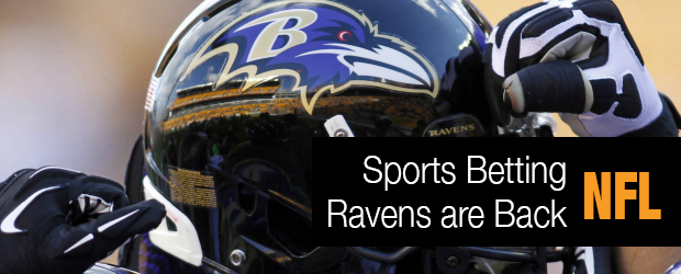 Sports Betting – The Ravens Are Back